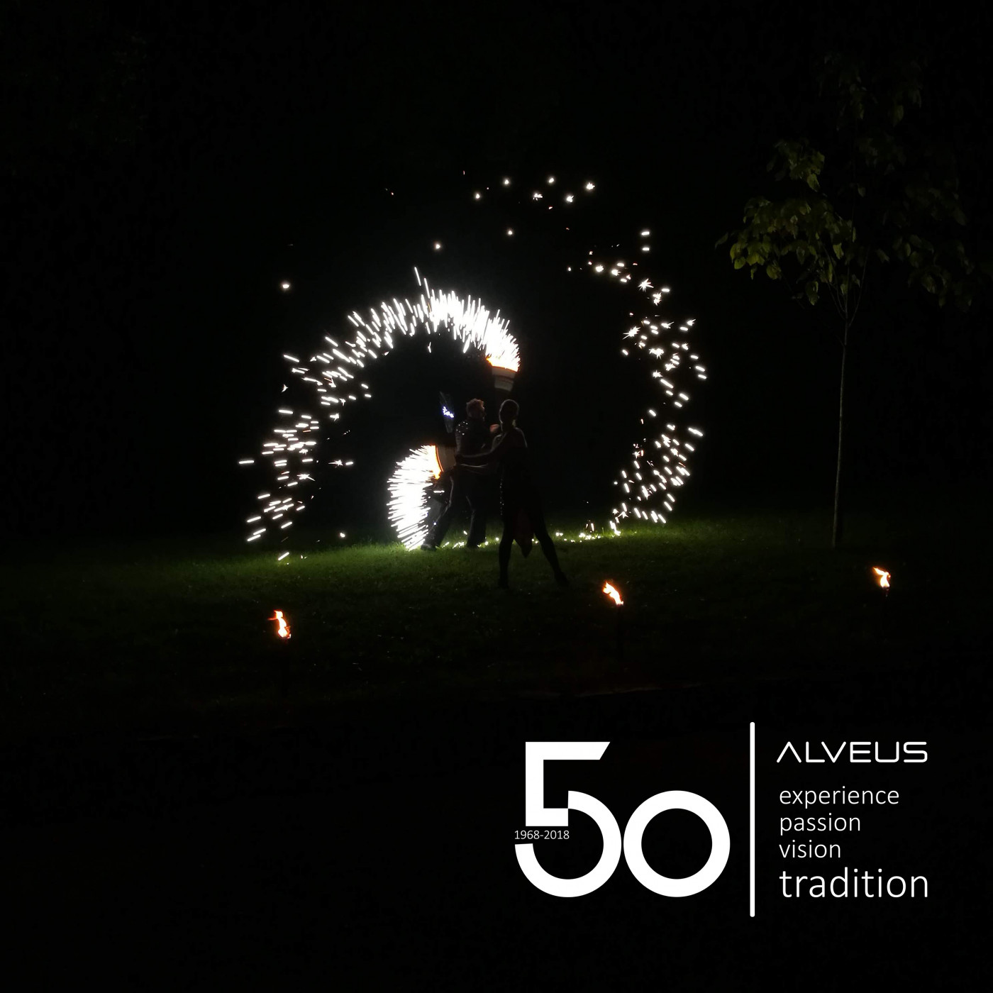 50th B-day for ALVEUS kitchen sinks